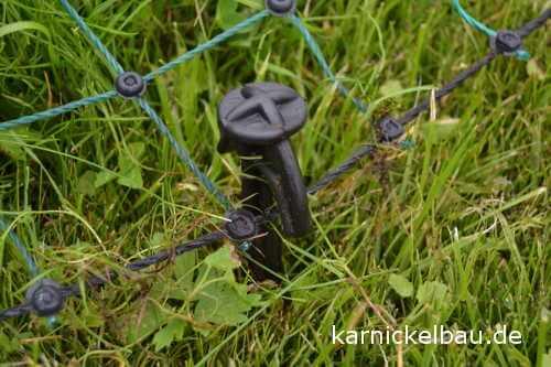 Kaninchennetz wird mit einem Hering am Boden befestigt